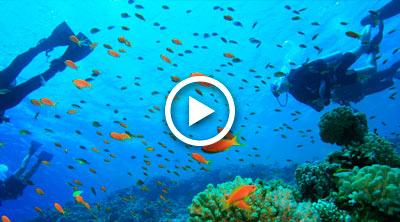 Sol Resorts Activities Video